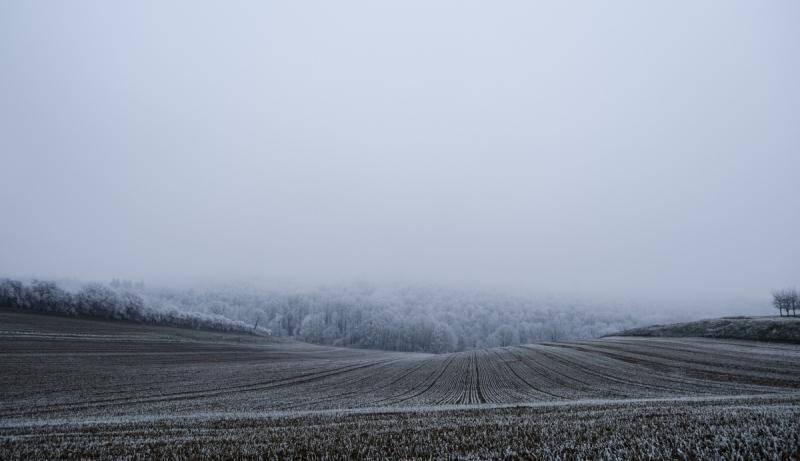 A winter walk in the frozen German countryside